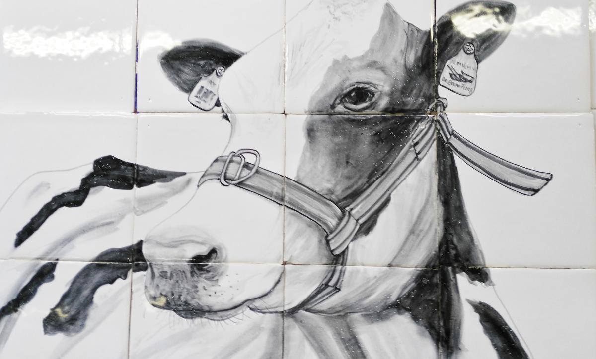 Koe op ambachtelijke tegel